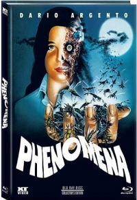 Phenomena Cover C